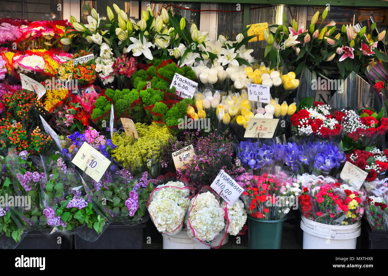 Flower display stand in the city - Stock Image