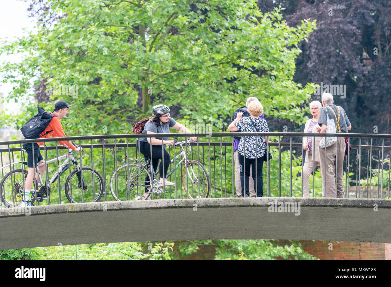 Students on bicycles stop for retired couples on Garret Hostel lane bridge over the river Cam, Trinity Hall college, university of Cambridge, England. - Stock Image