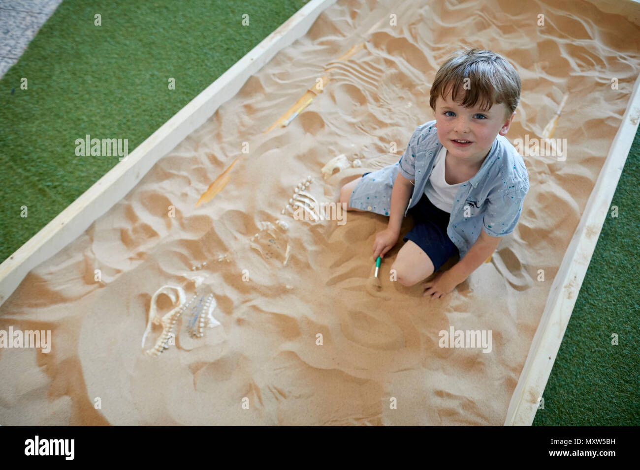 Child playing at being an Archaeology, or archeology discovering dinosaur bones in a sandpit - Stock Image