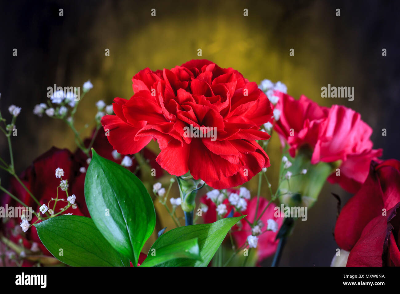 A close up photo of a red carnation within a bouquet. - Stock Image