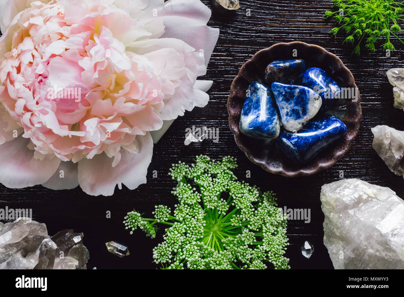 Sodalite and Quartz with Peony and Queen Anne's Lace on Dark Table - Stock Image