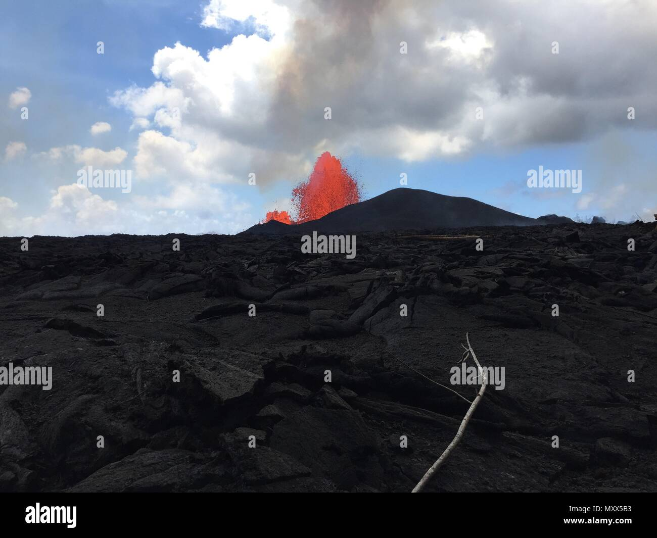 A massive lava fountain spewing magma 230 feet into the air from fissure 8 at the corner of Nohea and Leilani caused by the eruption of the Kilauea volcano June 3, 2018 in Hawaii. The recent eruption continues destroying homes, forcing evacuations and spewing lava and poison gas on the Big Island of Hawaii. - Stock Image
