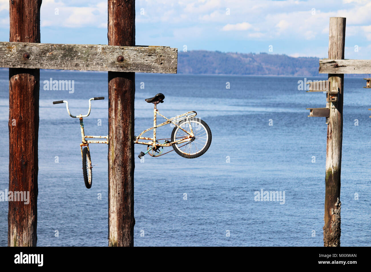 Old rusty bike above water - Stock Image