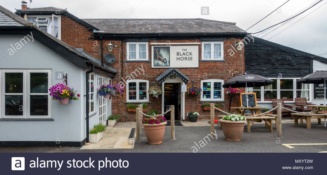 Exterior of the Black Horse Public House in the small Wiltshire village of Hurdcott - Stock Image