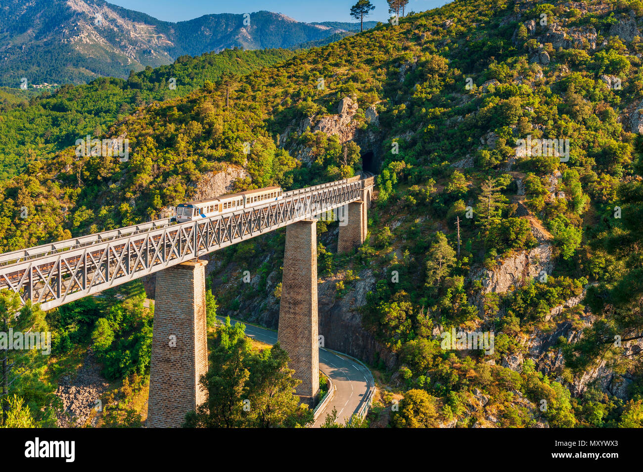 Train crossing Gustave Eiffel's Viaduct in Vecchio, Corsica, France - Stock Image