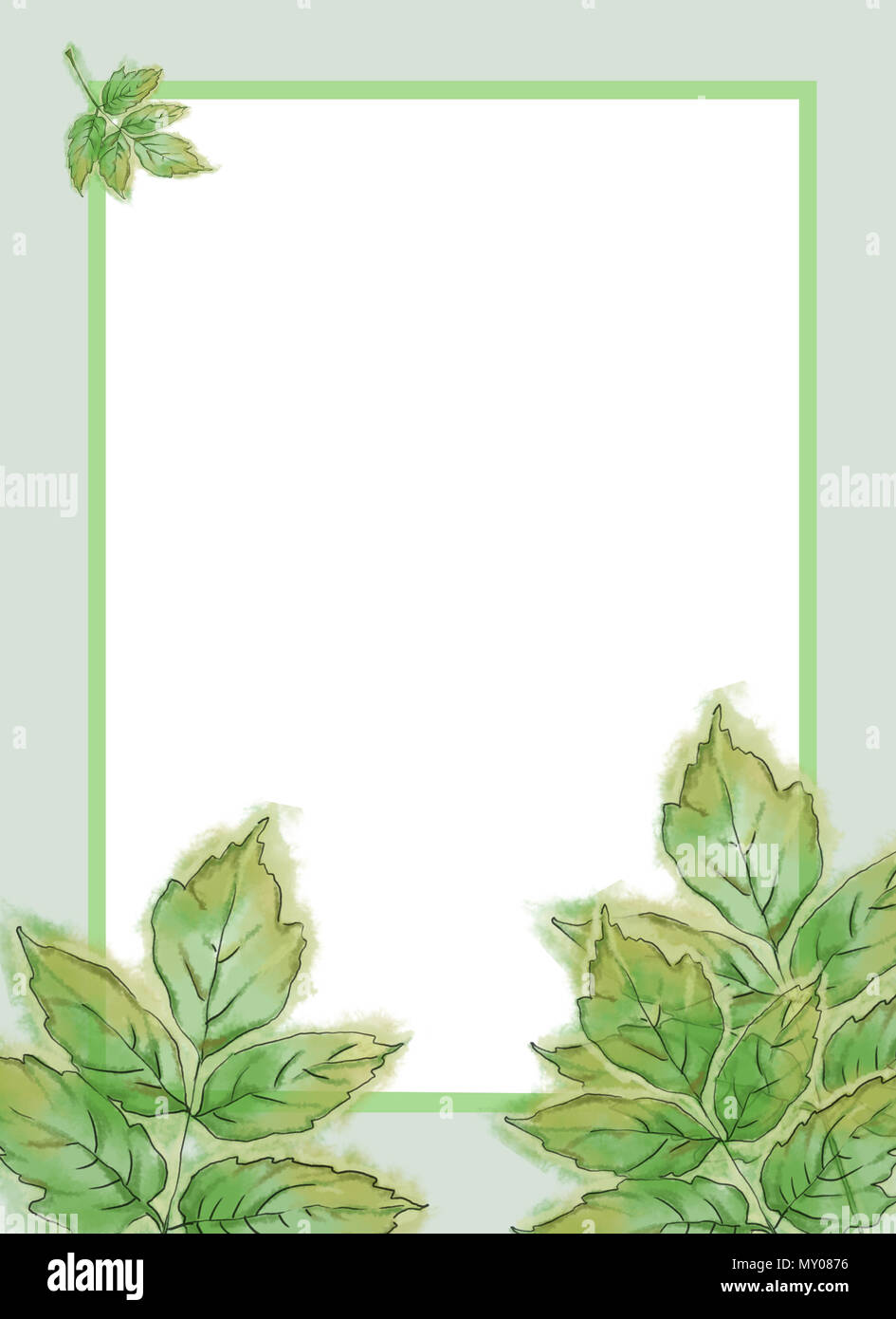 hickory leaves template with text space watercolor green foliage