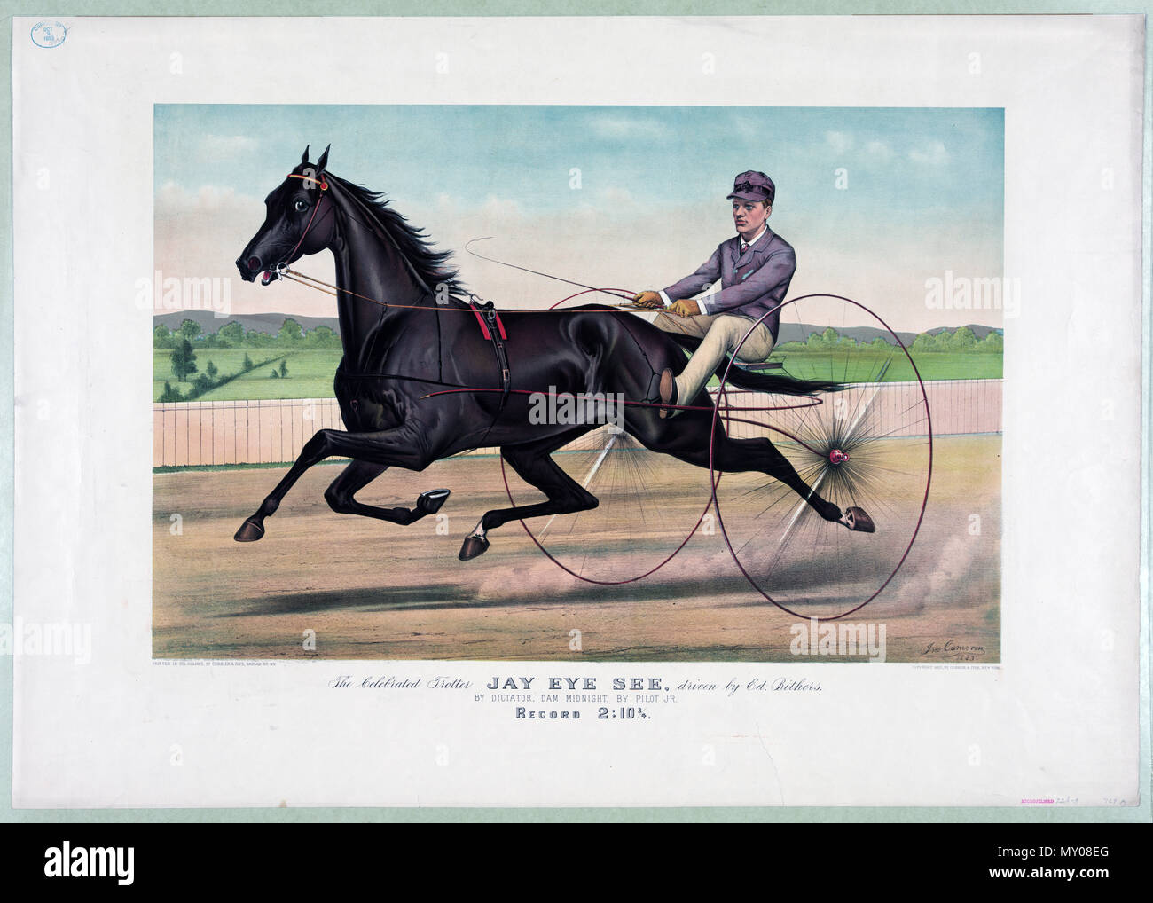 19th Century Horse Racing illustration c 1883.jpg - Stock Image