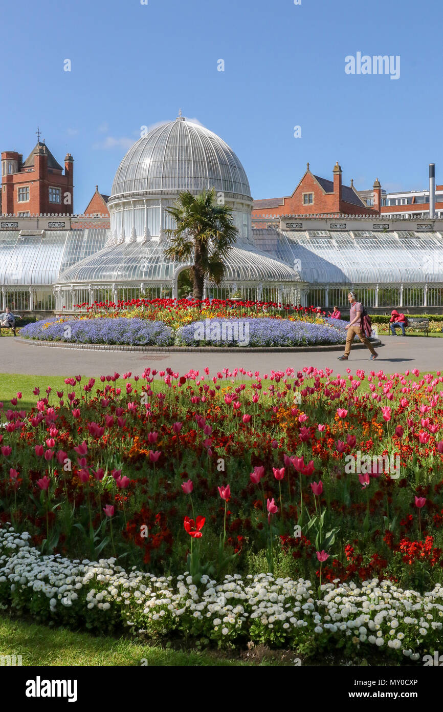 People in a UK park enjoying the sun and flowers beside the glass Palm House in Botanic Gardens, Belfast, Northern Ireland. - Stock Image