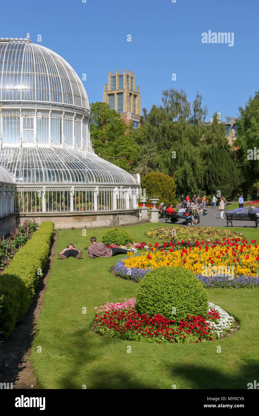 People lying on the grass beside brightly coloured flowerbeds and the glass Palm House in Botanic Gardens, Belfast, Northern Ireland. - Stock Image