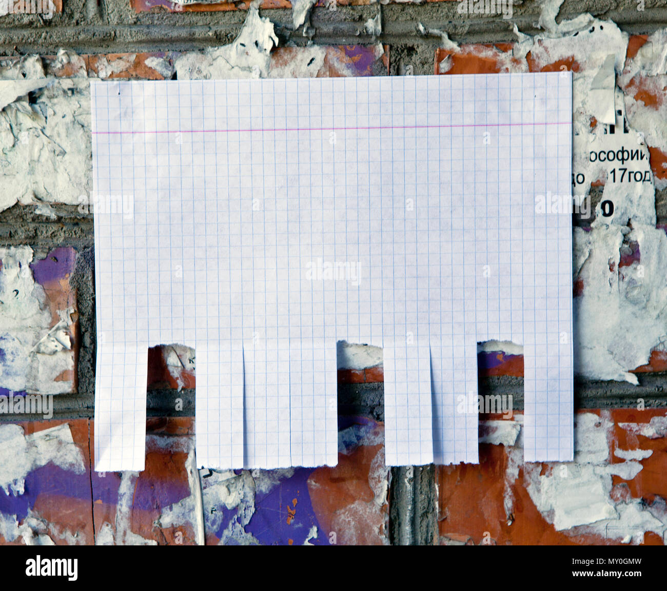 Blank white paper with tear off tabs Stock Photo: 188712521 - Alamy