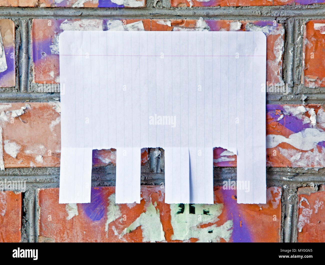 Blank white paper with tear off tabs Stock Photo: 188712529 - Alamy