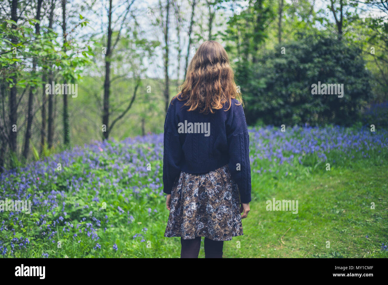 A young woman is walking in a forest with bluebells - Stock Image