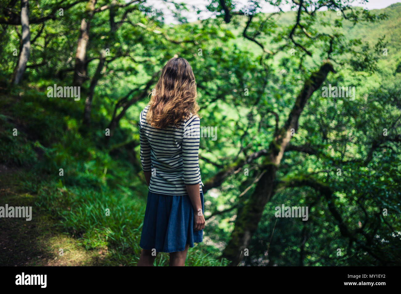 A young woman is standing in the forest on a summer day - Stock Image