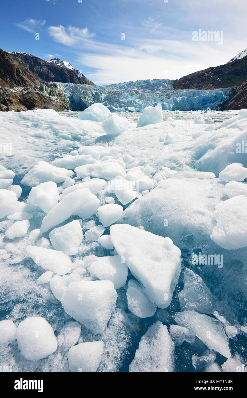 Drift ice and meltwater at Sawyer glacier, Tracy Arm Fjord, Alaska, North Pacific, USA - Stock Image