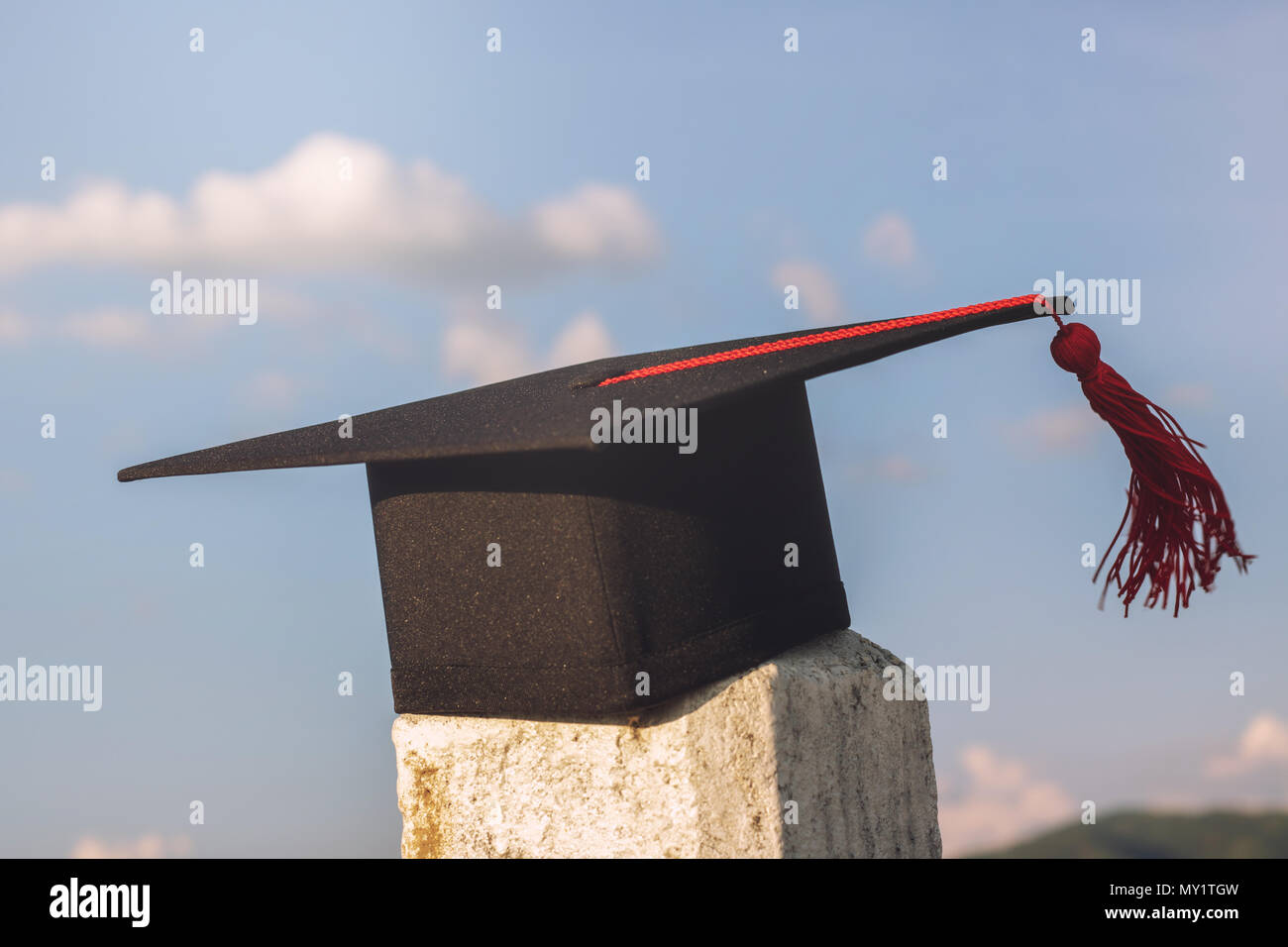 graduate hat and certificated in the garden - Stock Image