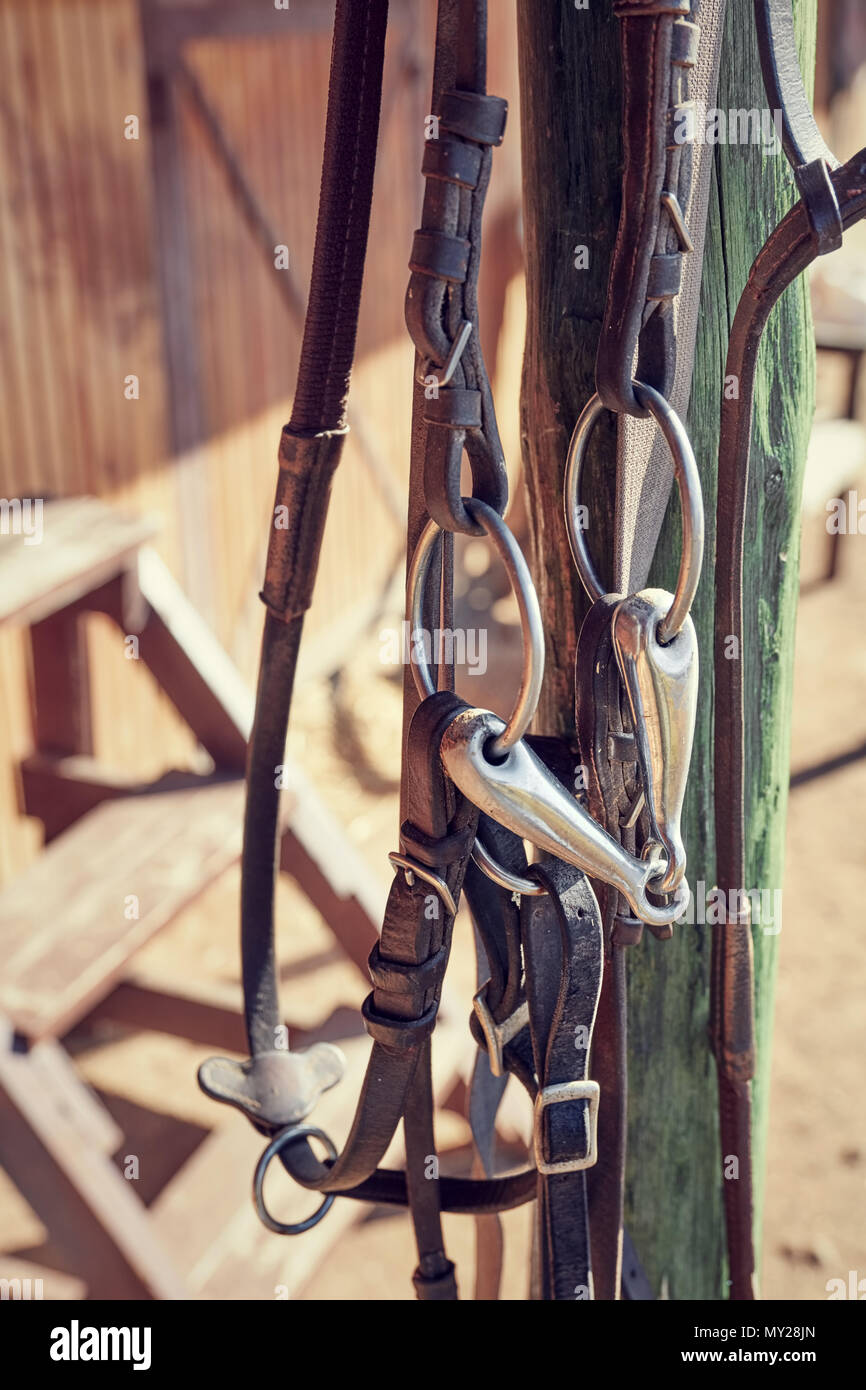 Vintage Brown Leather Horse Bridle Hanging From A Wooden Pole Of A Stable Close Up View Stock Photo Alamy