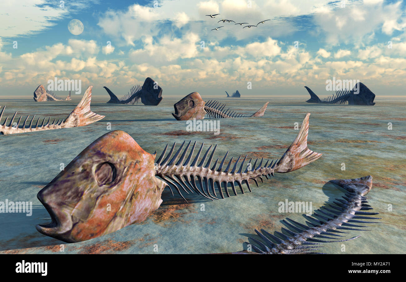 Dead Seas & Oceans - Stock Image