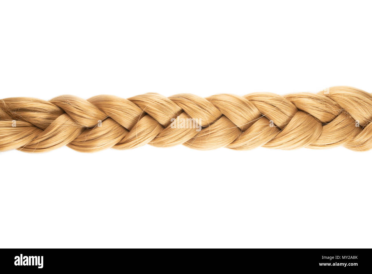 blond plait or braid of blond hair on white background - Stock Image