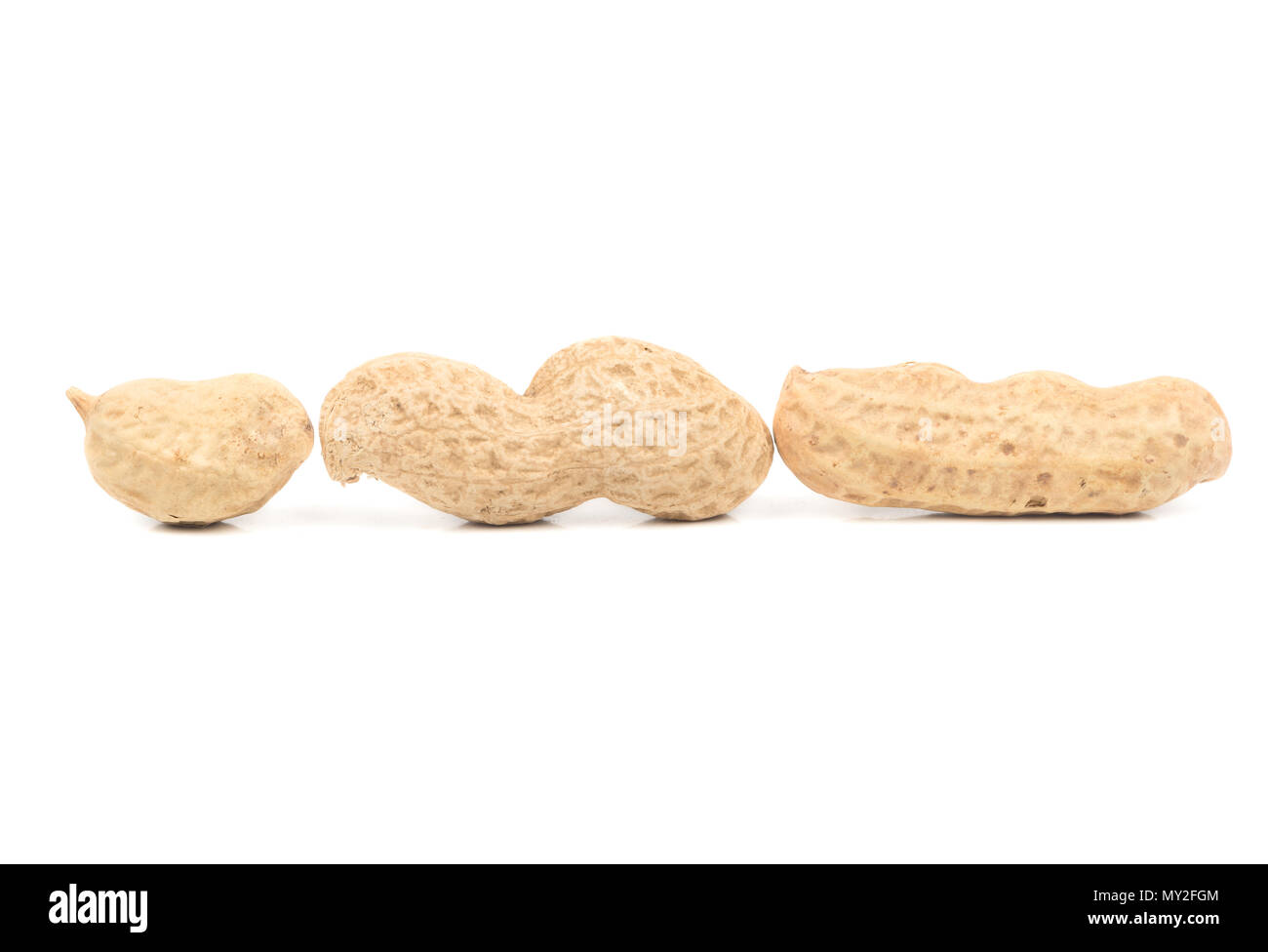 Three peanut inshell with different number of cores on a white background - Stock Image