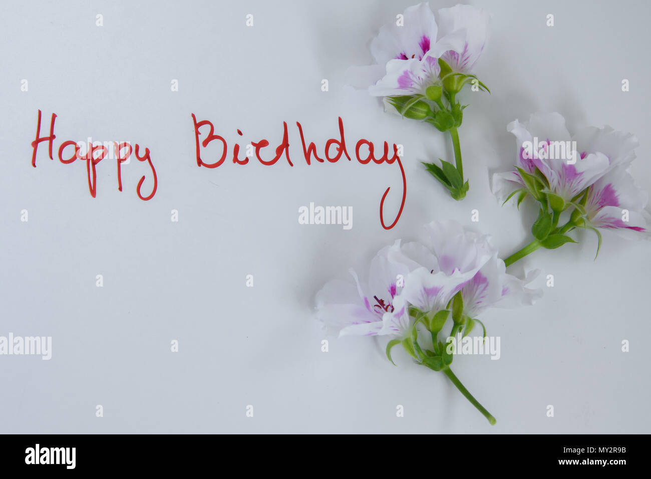 Happy Birthday Greeting Card With Fresh Flowers On White Background