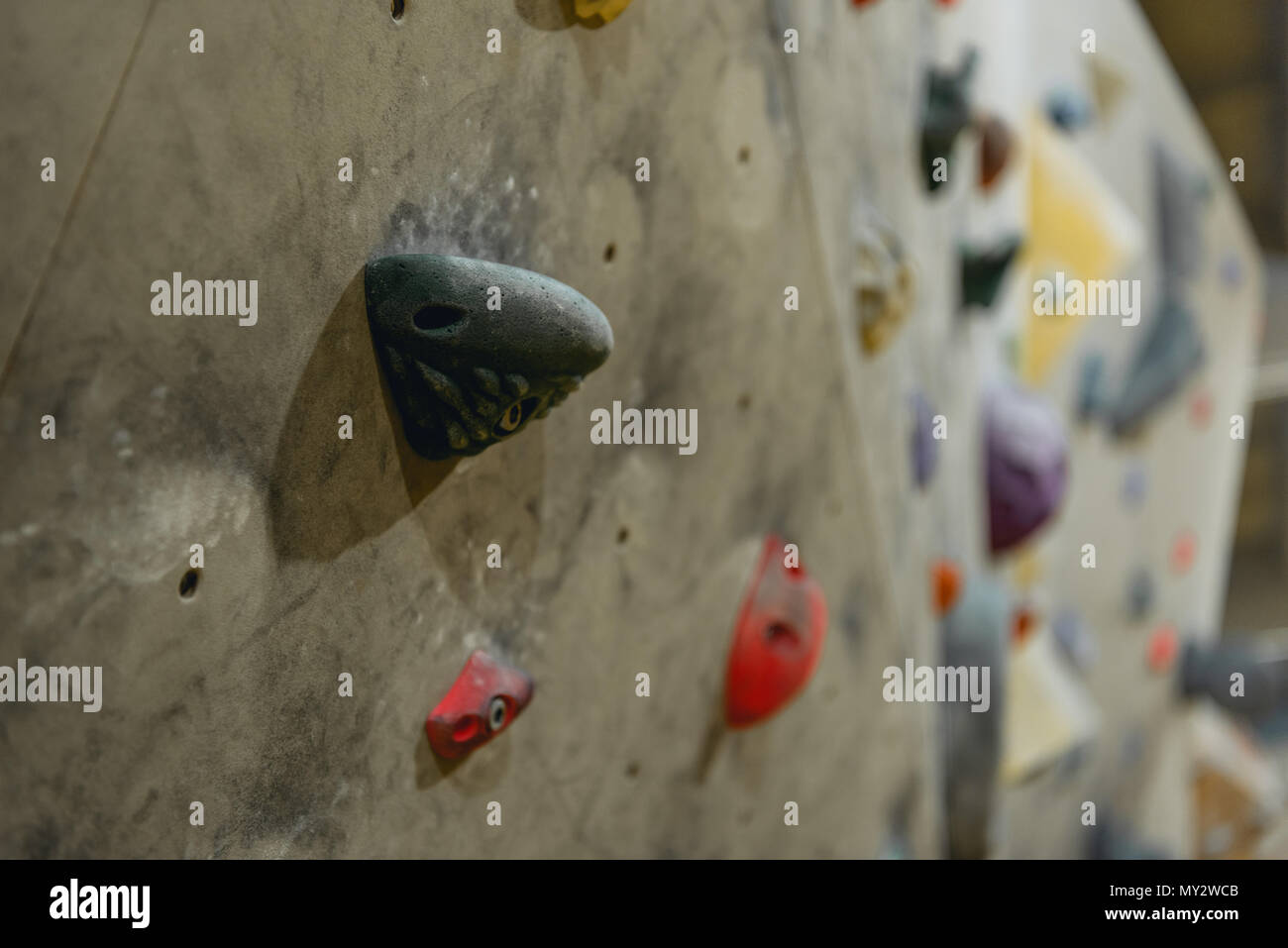 Closeup shot of grips for hands on a climbing wall at gym - Stock Image