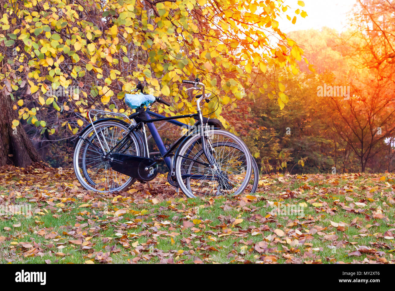 Bike parked in the fall public park with sunset background outdoor bike parked in the fall public park with sunset background outdoor bicycle in autumn park with sunset and sunshine landscape background voltagebd Image collections