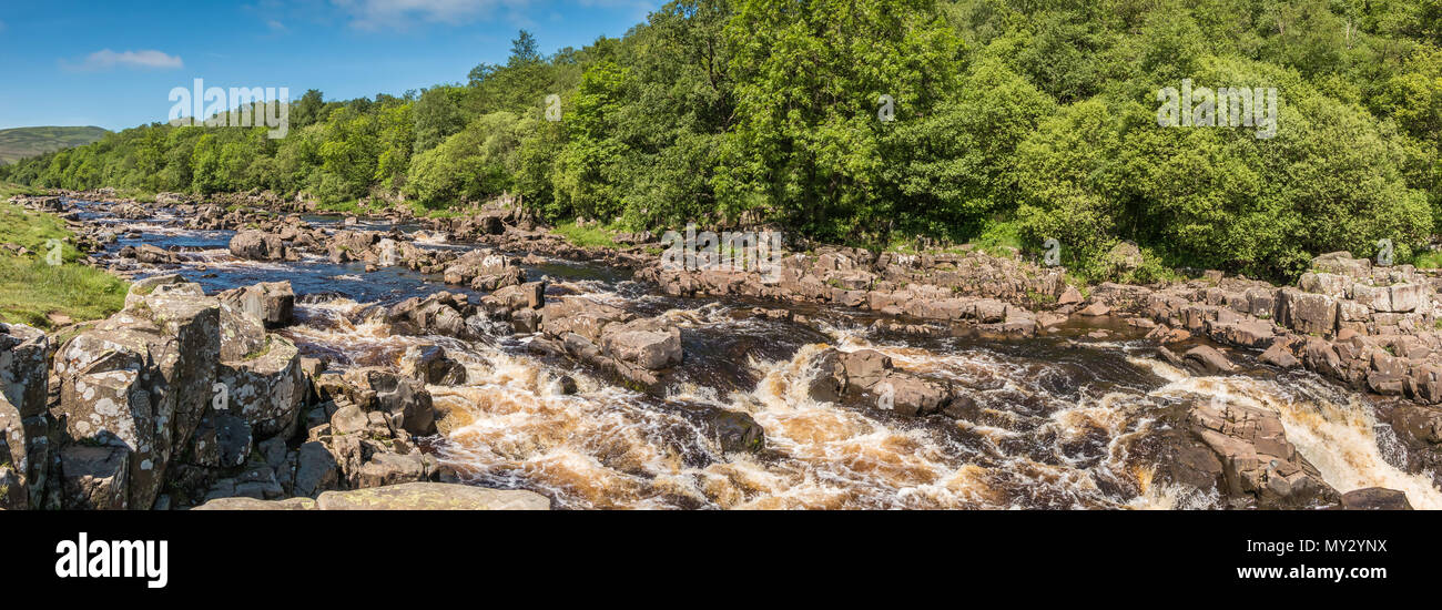 Panoramic view of the river Tees above High Force Waterfall, North Pennines AONB, UK from the Pennine Way long distance footpath in summer sunshine - Stock Image