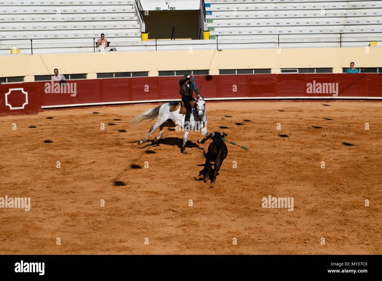 bullfighting Praça de Toiros de Albufeira Portugal - Stock Image