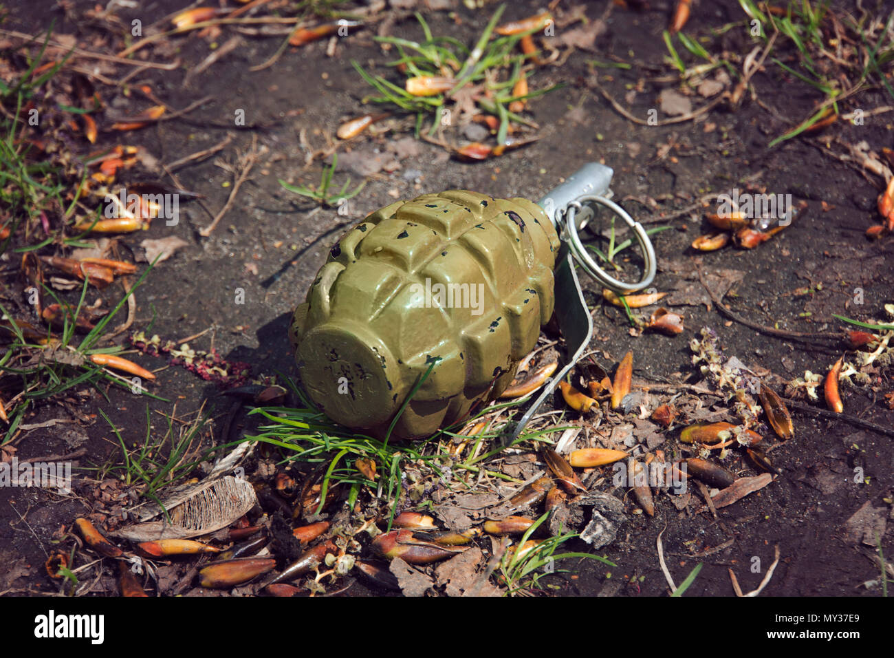 hand grenade grenade lying on the ground. - Stock Image