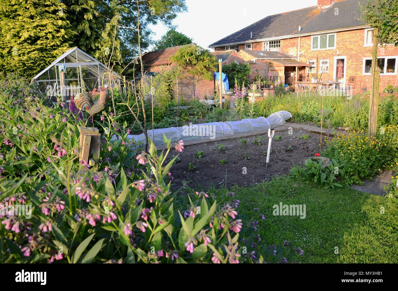 Mixed Vegetable Garden At Rear Of English Cottage UK Stock Photo