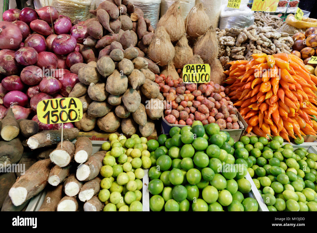 Santiago, Chile: Vega Market aka Mercado Vega is the place to go for fresh and regional produce - Stock Image