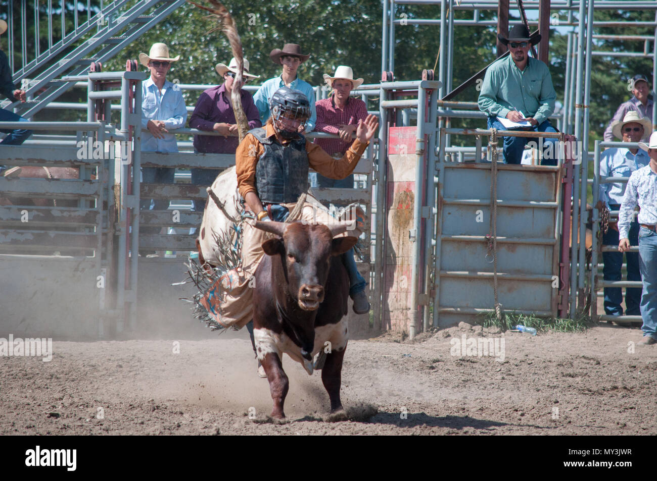 Bull Rider Rodeo Stock Photos Amp Bull Rider Rodeo Stock