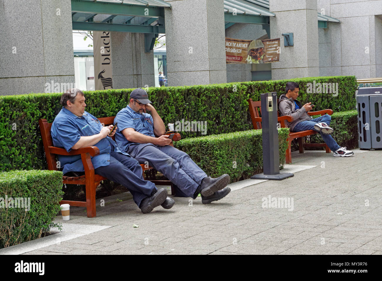Men sitting on benches using cell phones in Vancouver, BC, Canada - Stock Image