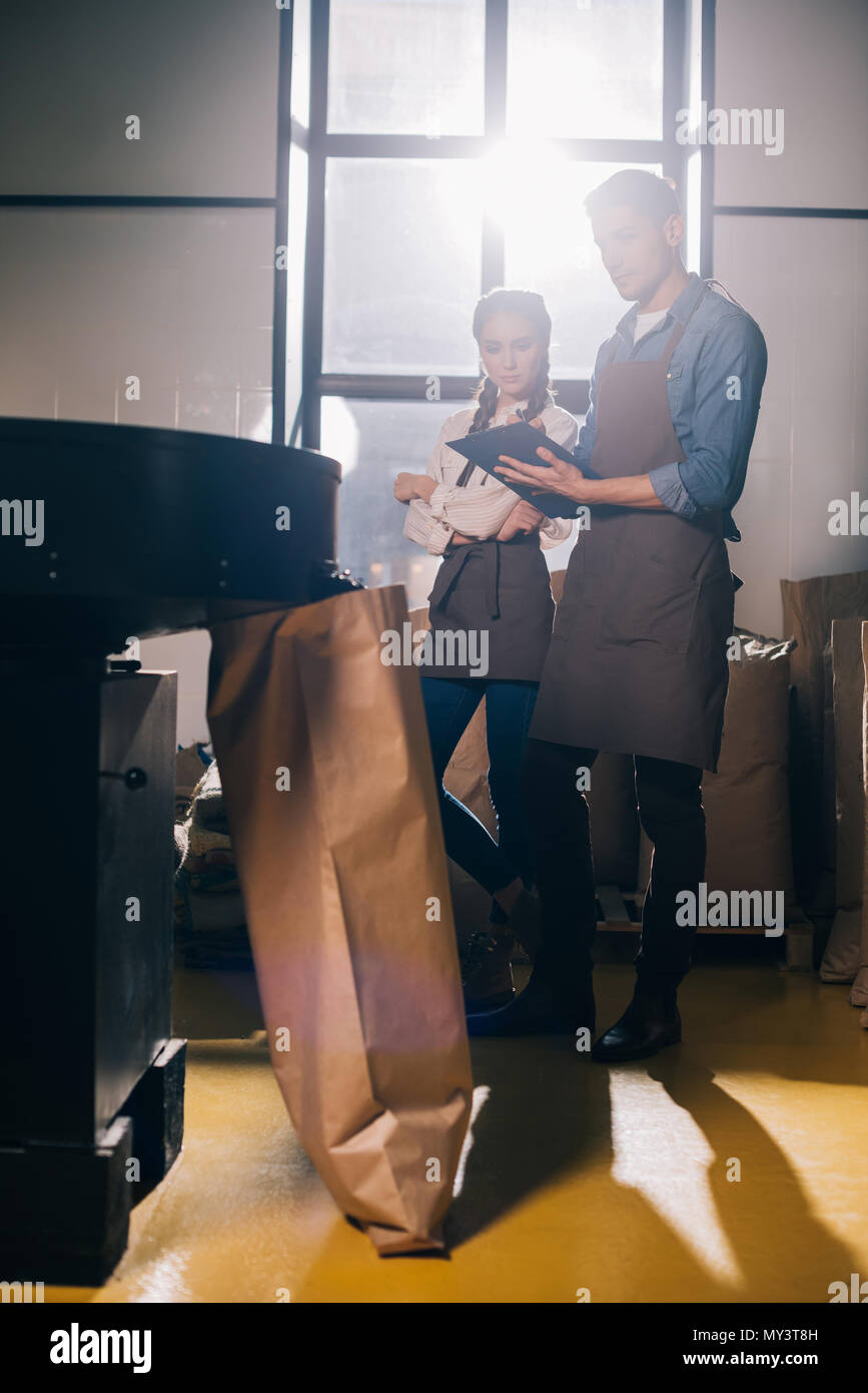 young coffee roasters checking coffee beans roasting process together in coffee shop - Stock Image