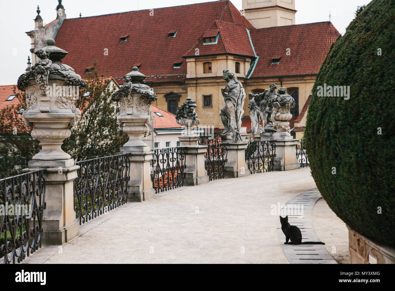 Prague, September 18, 2017: A black cat sits on the background of the medieval architecture of Prague in the Czech Republic - Stock Image