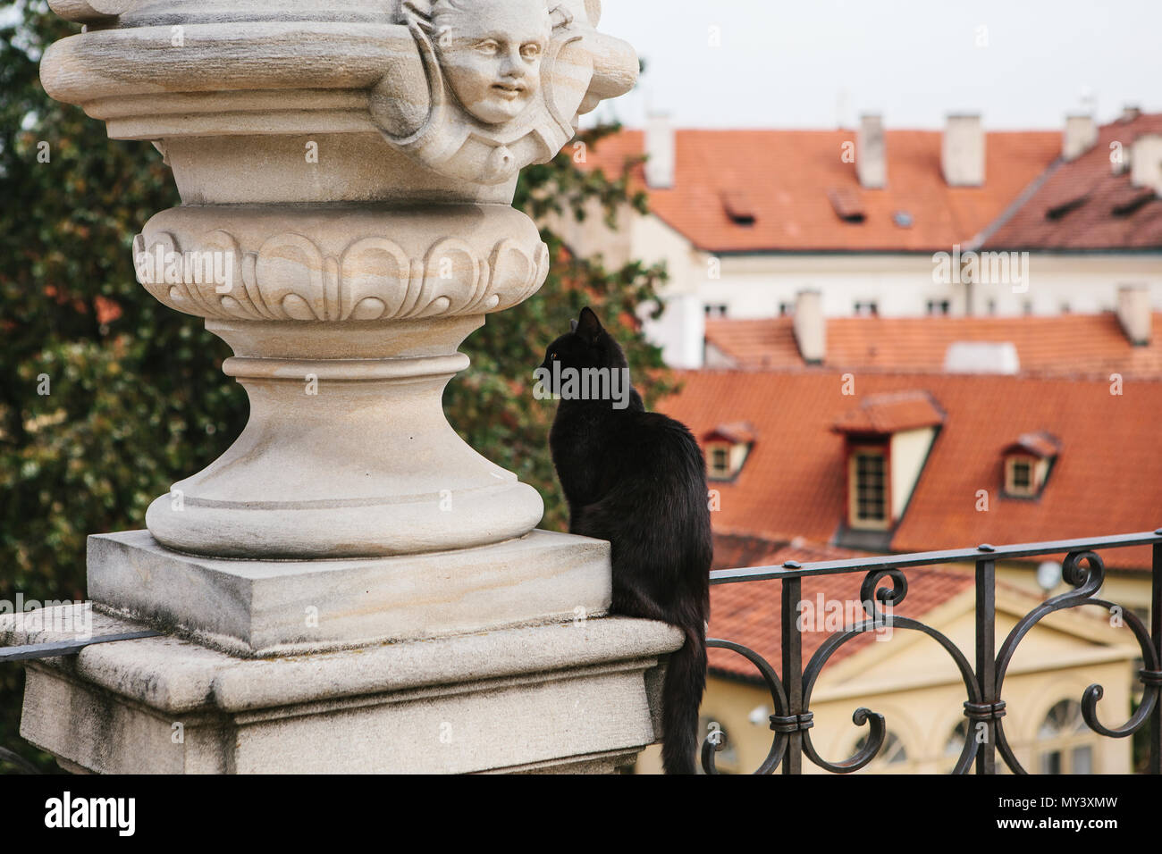 A black cat sits on the background of the medieval architecture of Prague in the Czech Republic - Stock Image