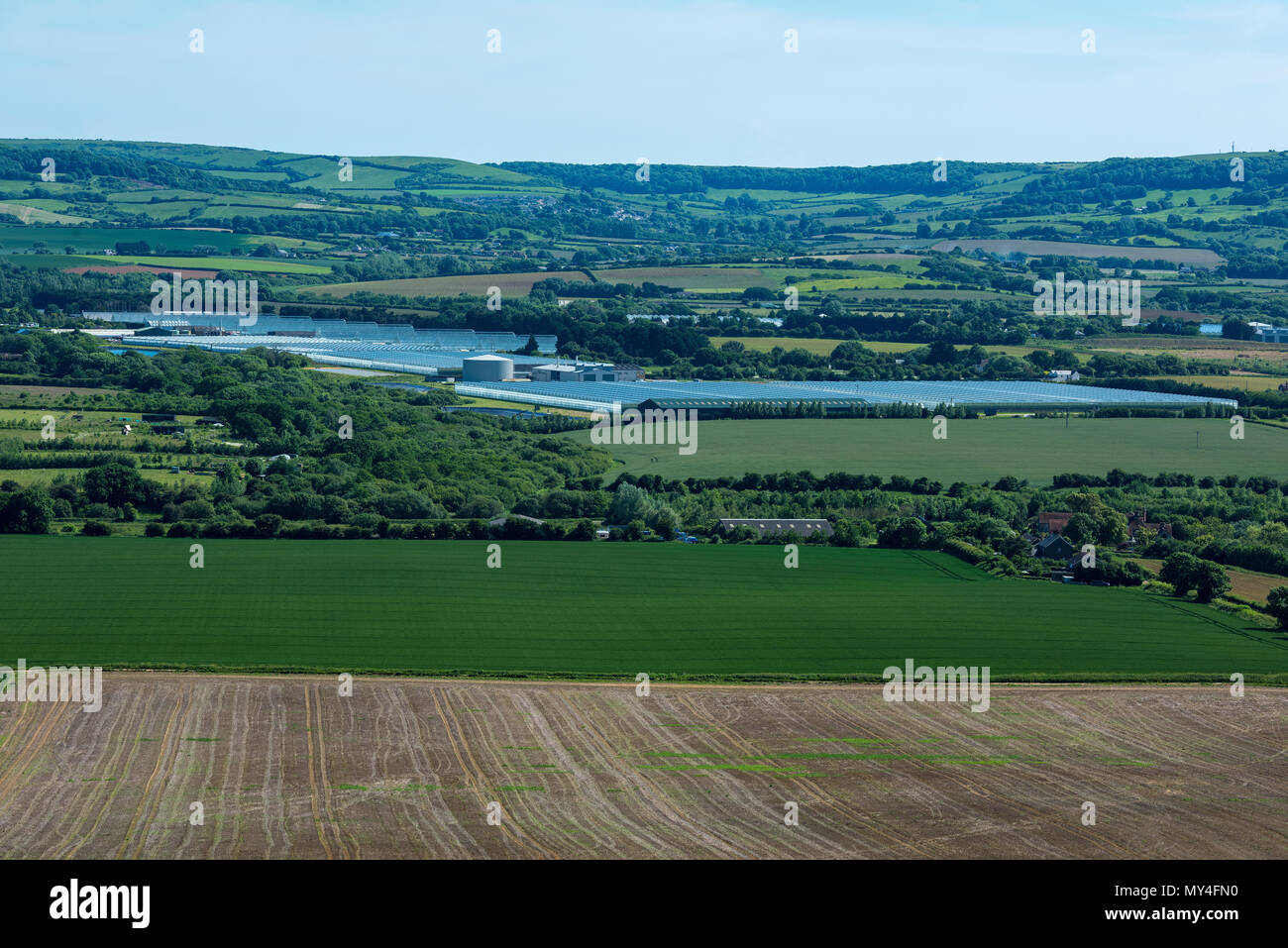 The large enormous greenhouses and glasshouses at arreton on the Isle of Wight. Wight salads growing a variety of salad vegetables. Commercial scale. - Stock Image