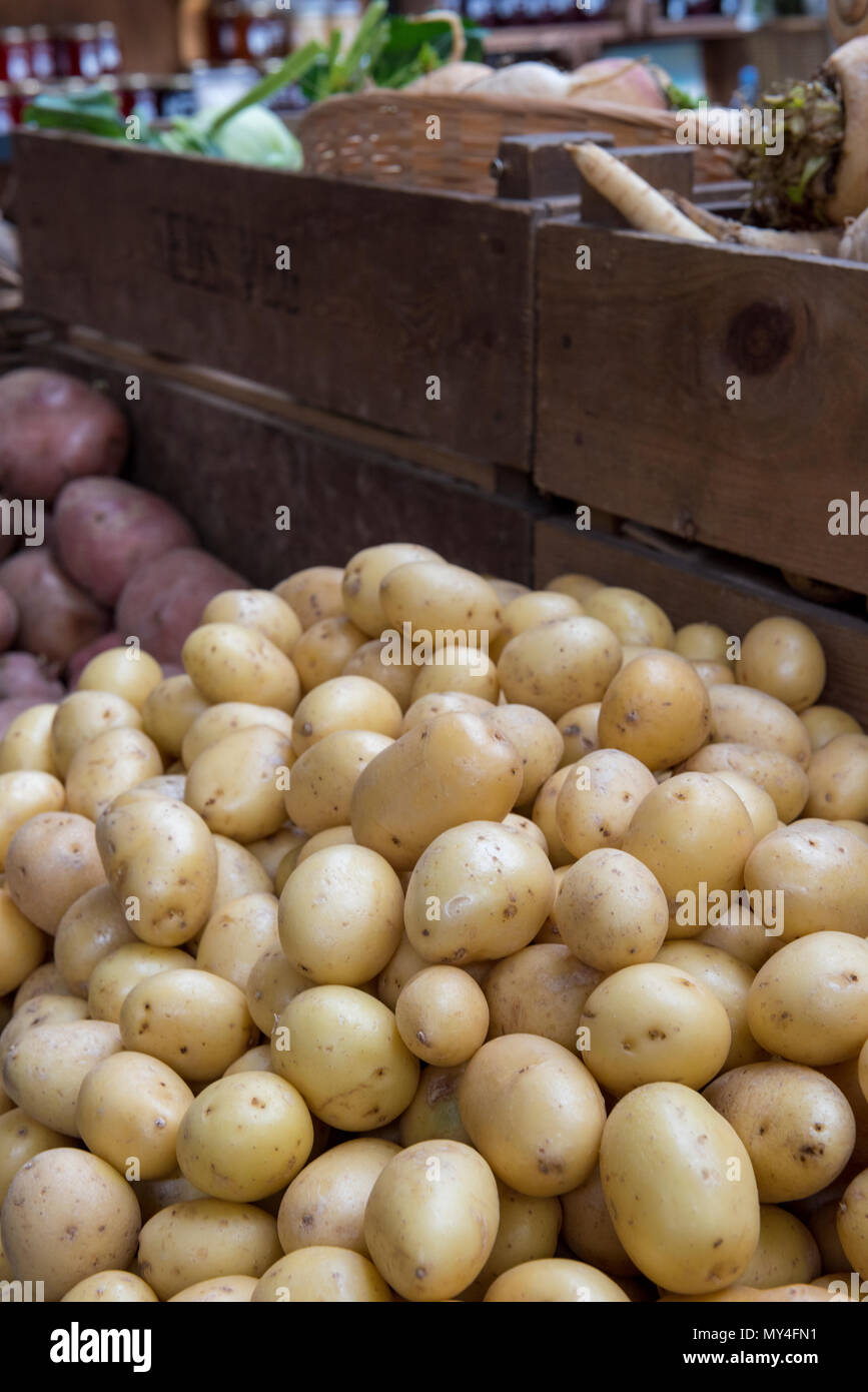 a large quantity of potatoes on a fruit and vegetable greengrocers stall on borough market in central London. fresh fruits and vegetables 5 a day. - Stock Image