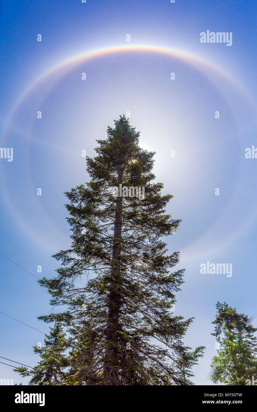 22° halo ring of light 22 degrees from the sun formed by hexagonal ice crystals with additional circumscribed haloes, Comox Valley, British Columbia,  - Stock Image