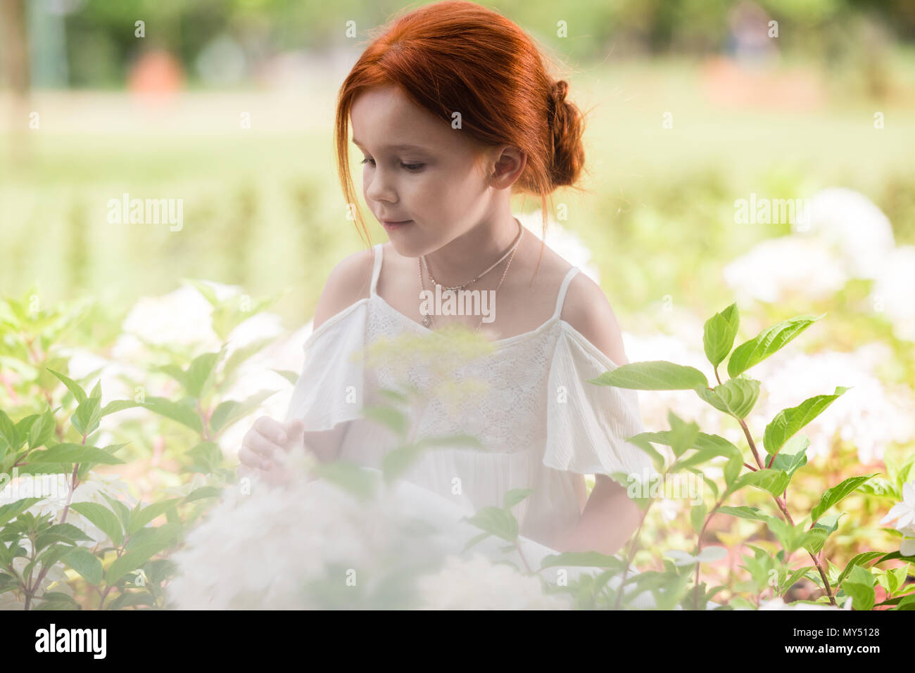 d8c79731bfa beautiful smiling red haired girl looking at white blooming flowers in  flower bed - Stock Image