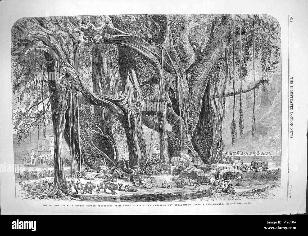 . English: 'Cotton from India: a cotton convoy proceeding from Rewah towards the Ganges--night encampment under a banyan tree,' from the Illustrated London News, 1862; *a closer look at the cotton carts*; also: *'A cotton fleet descending the Ganges--casting off from Mirzapore early in the morning'*; also: *'The cotton famine'* Source: ebay, Oct. 2005 . 1862. Illustrated London News 125 Cotton from India Stock Photo
