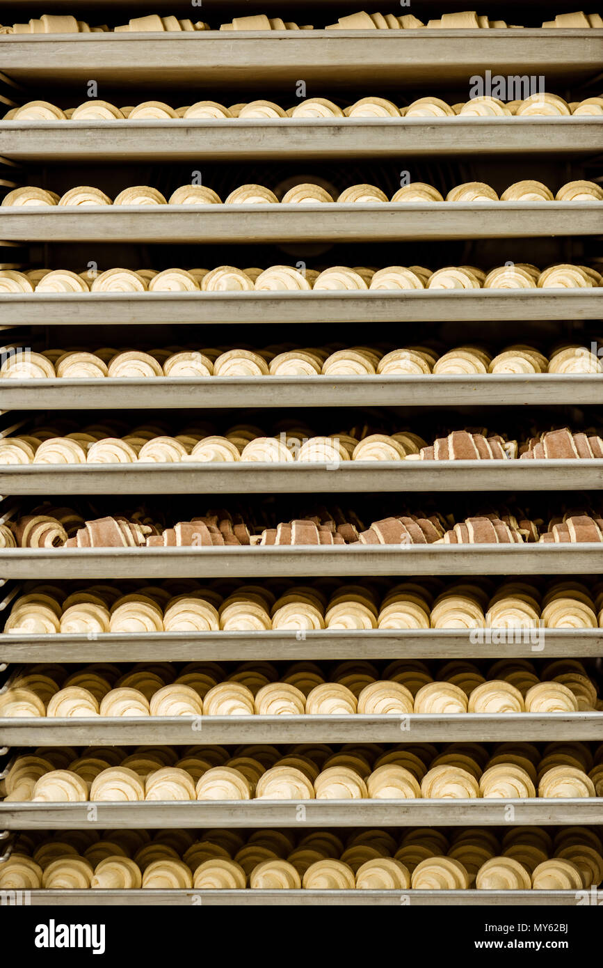 raw croissants on shelves in industrial oven - Stock Image