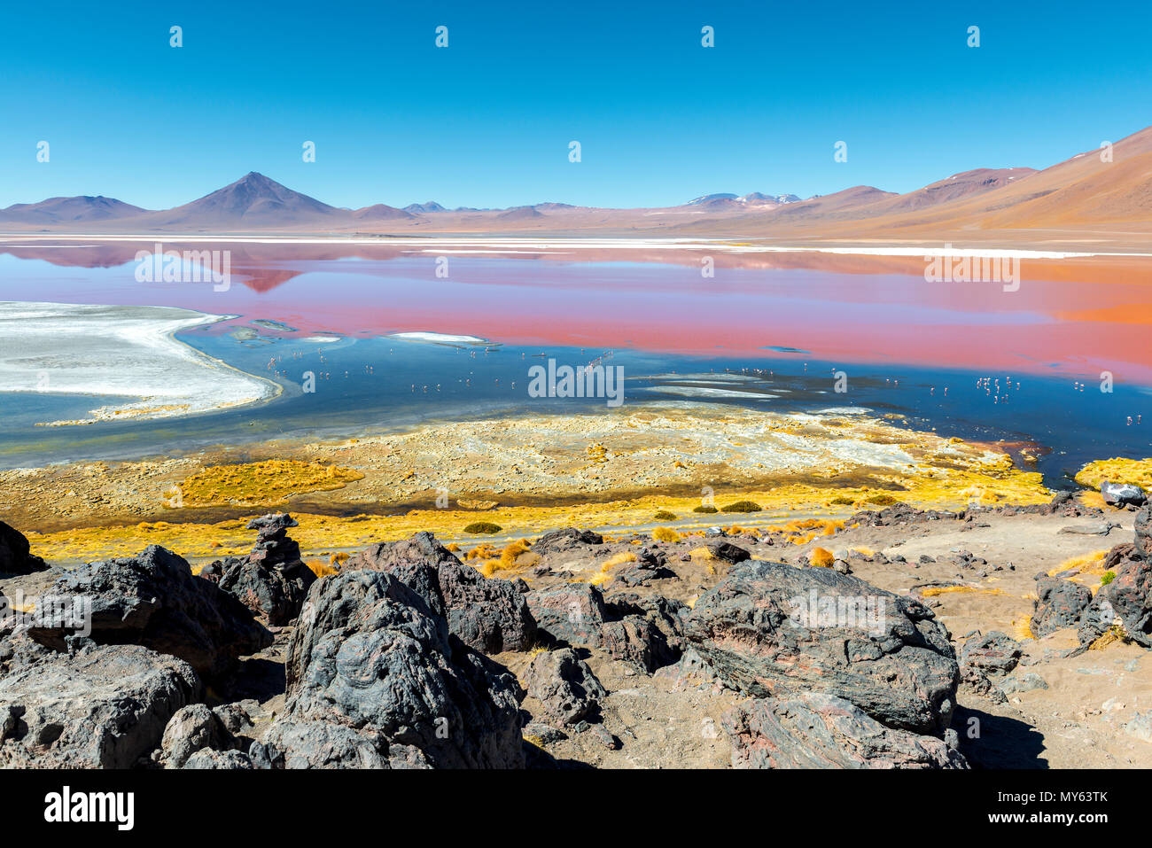 Landscape of the Laguna Colorada or Red Lagoon in the Uyuni Salt Flat region, Bolivia, South America. The red colors are due to algae and sediments. - Stock Image