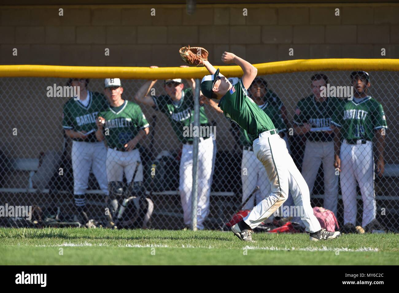 First baseman making a running catch of a foul pop fly. USA. - Stock Image