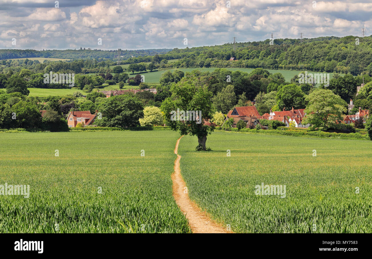 An English Rural Landscape with track through a field in the Chiltern Hills leading to the Village of Little Missenden - Stock Image