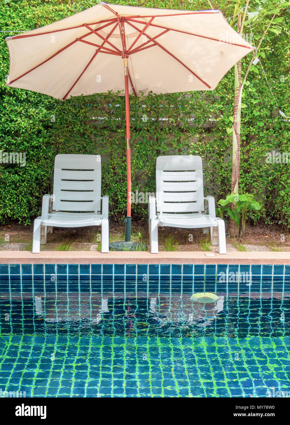 Couple White Plastic Sun Bed And Beach Umbrella With Swimming Pool And Tree Wall Background Stock Photo Alamy