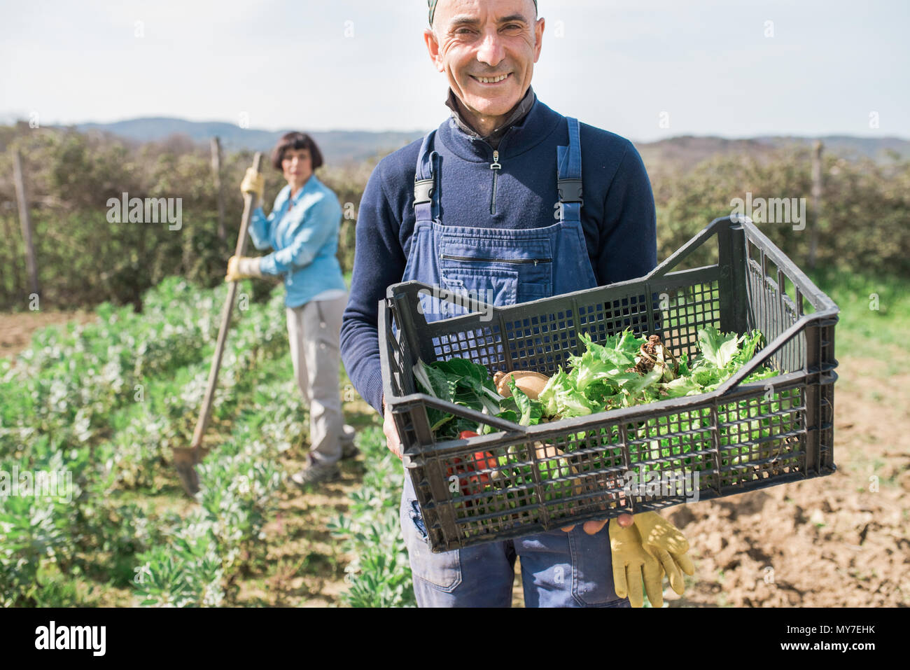 Man with crate of vegetables in garden, woman working in background Stock Photo