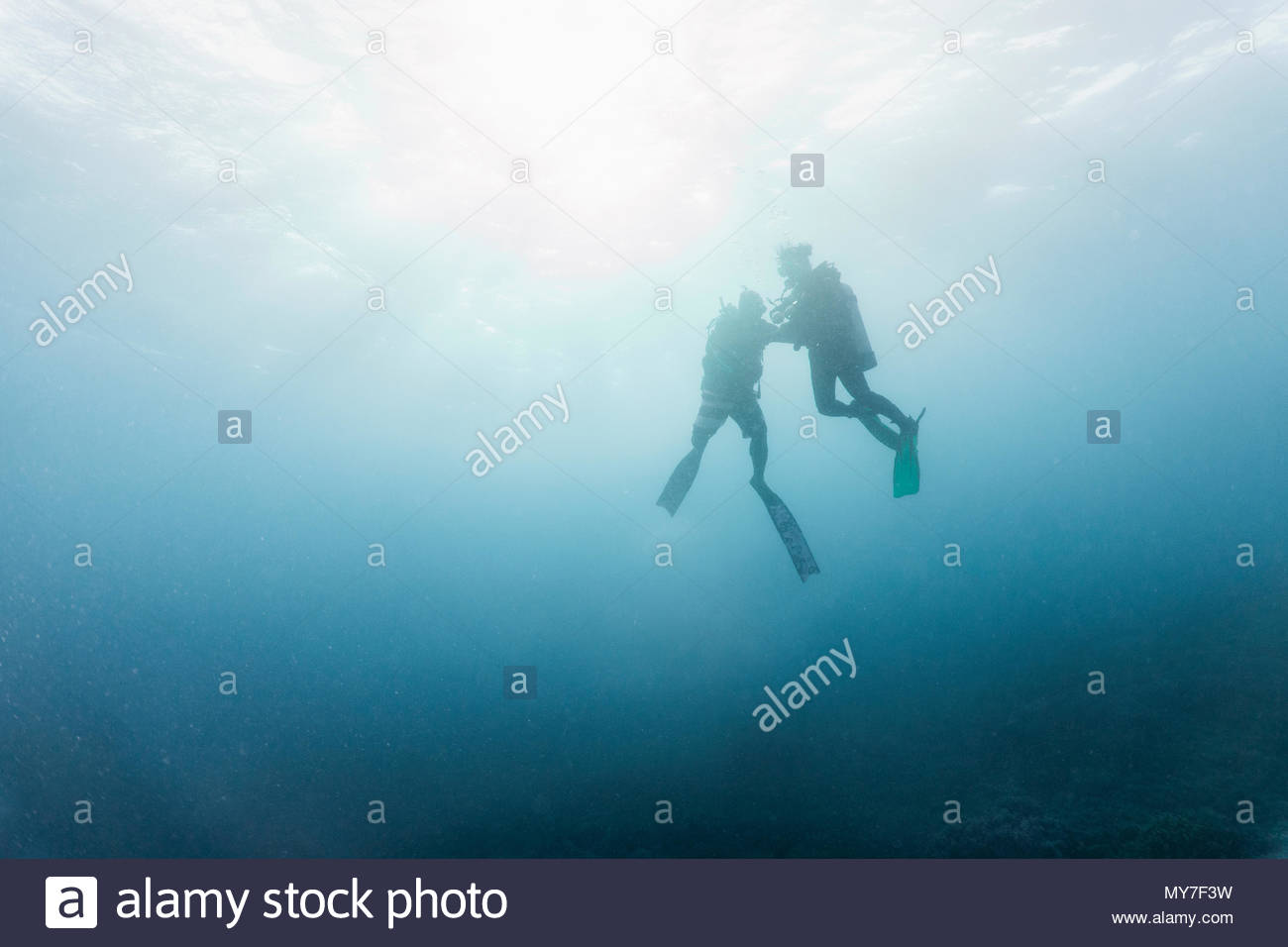 Two divers performing mandatory safety stop, underwater view, Tubbataha Reefs Natural Park, Cagayancillo, Palawan, Philippines - Stock Image