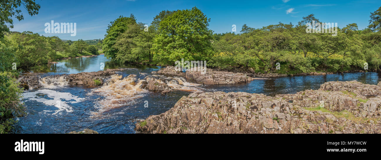 A panoramic view of the river Tees betwen Low Force and High Force waterfalls, Teesdale, North Pennines AONB, UK from the Peniine Way in summer - Stock Image