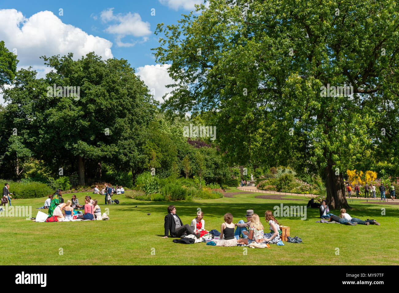 Summer picnic in Hyde Park, London, UK - Stock Image